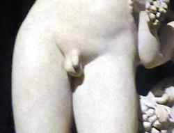 Bacchus penis P0622