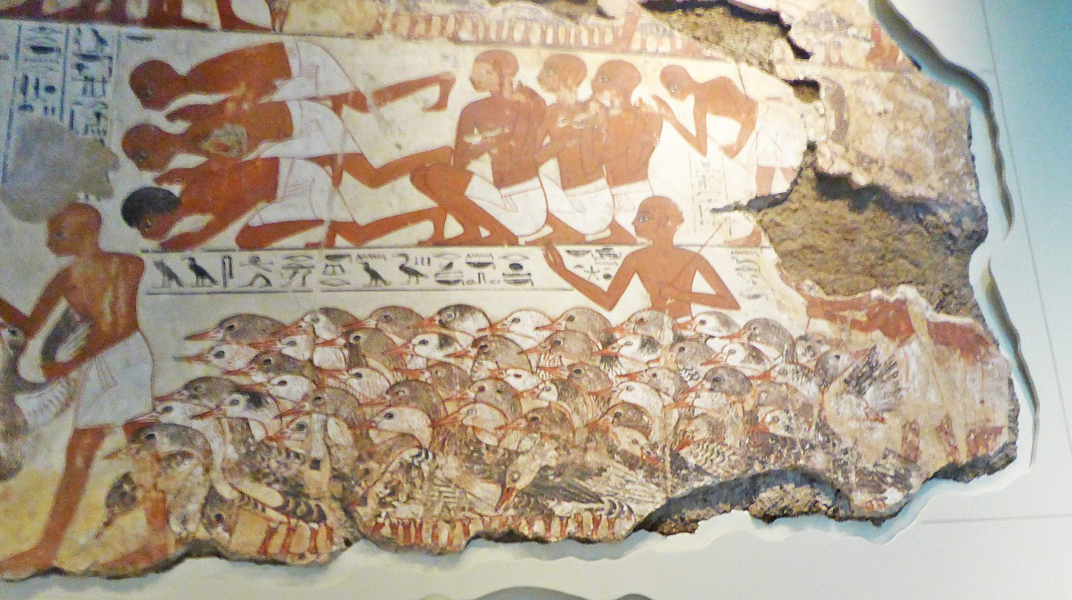 Tomb of Nebamun and herd of geese